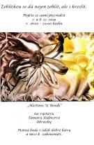 Výstava obrazů Tamara Kubicová 1