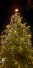 Rozsvícení vánočního stromu 1